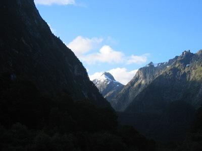 NZ01.jpg