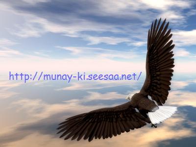 eaglemunay_ki.jpg
