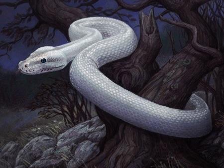 serpentspirita.jpg